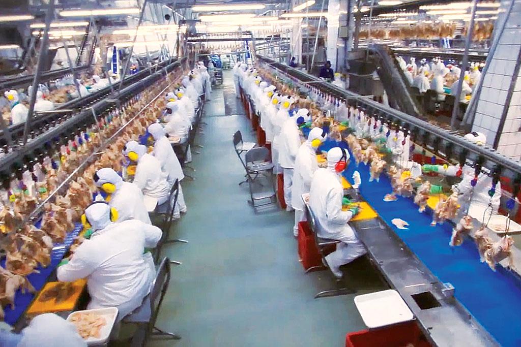 brasil pode participar de novo arranjo de globalização